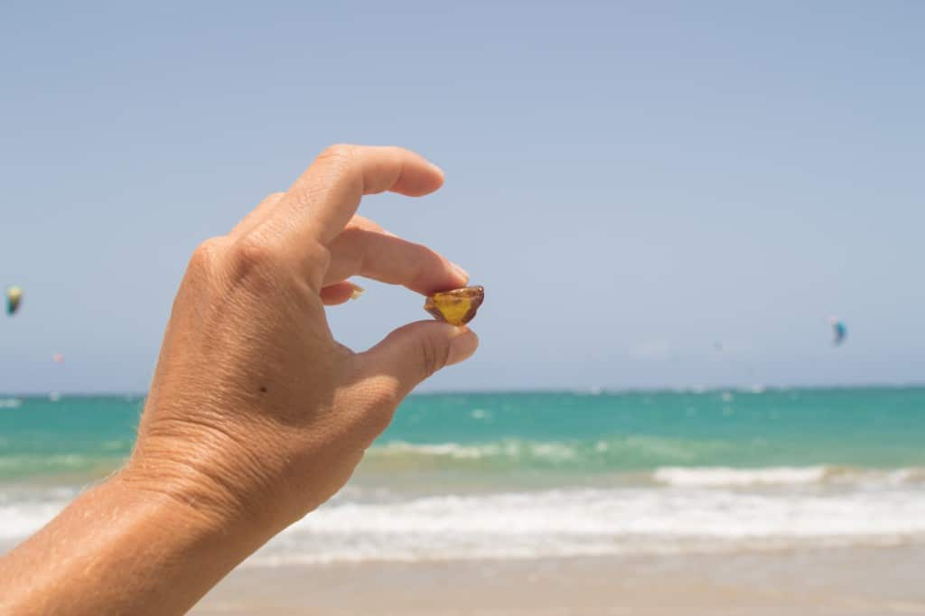 Amber found on the beach in Cabarete, Dominican Republic