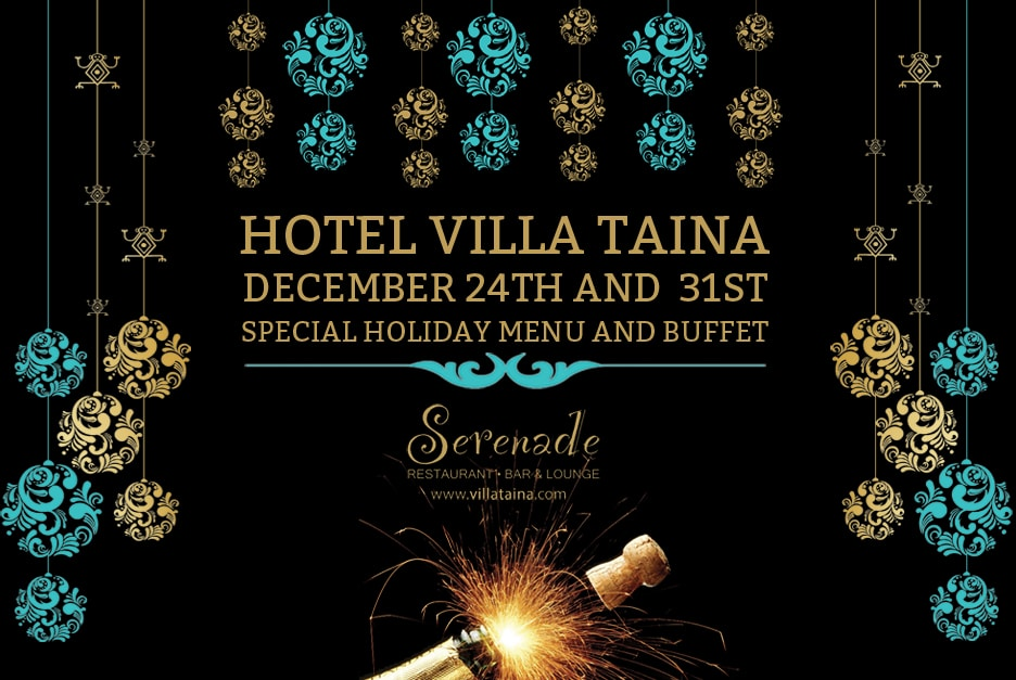 Christmas and New Years Special Menu 2015