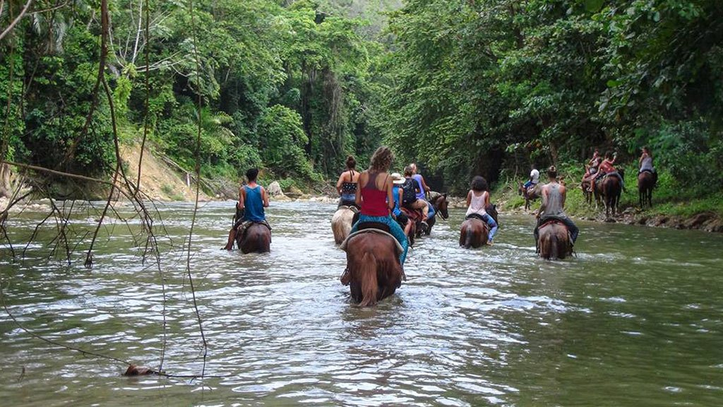 Horseback Riding in Cabarete